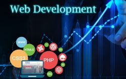 The Success That The Sector Of Web Development California Achieved